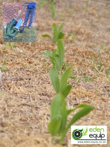 haraka planter