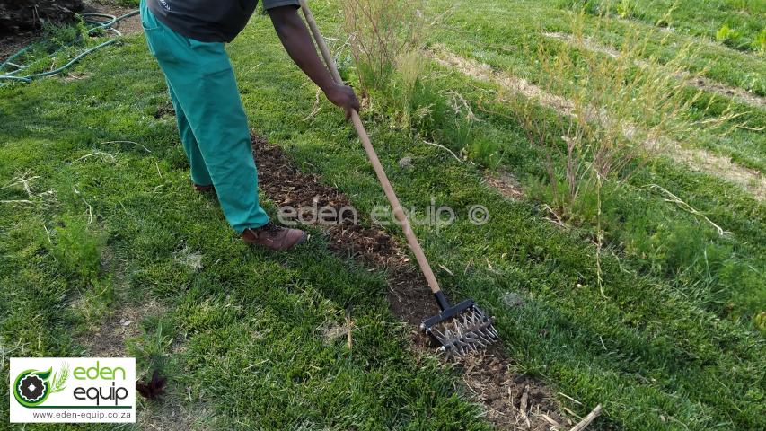 Cultivator Hoe